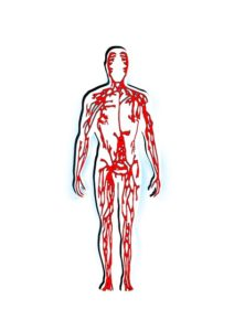 Chronisch Venöse Insuffizienz – Ursachen, Behandlung und Therapie