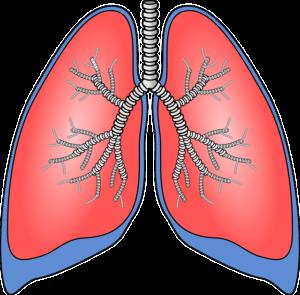 Respiratorische Azidose – Ursachen, Folgen und Therapie