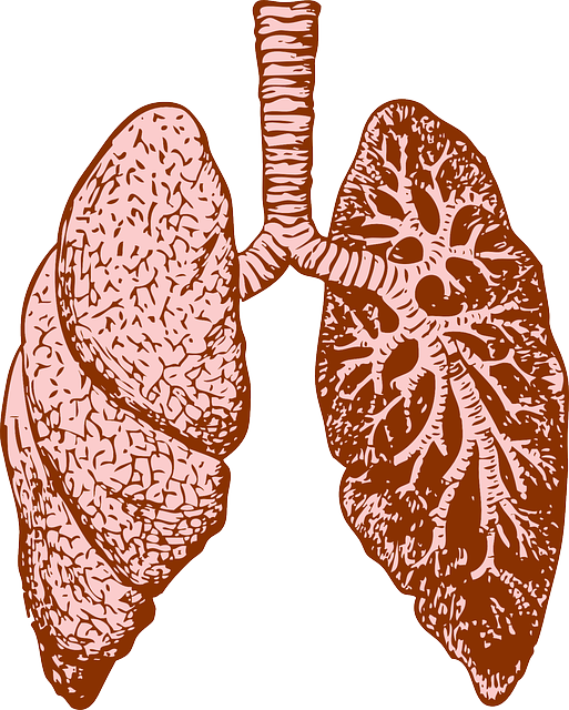 Cheyne Stokes Atmung – Ursachen, Behandlung und Therapie