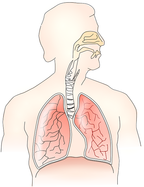 Eosinophile Ösophagitis – Ursachen, Symptome und Behandlung