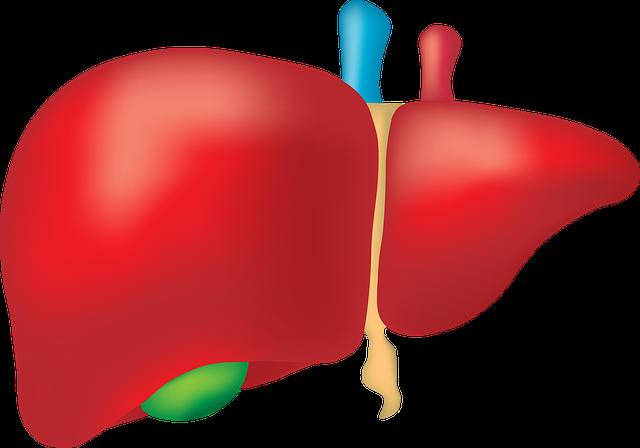 Klatskin Tumor – Anatomie, Lage und Typen