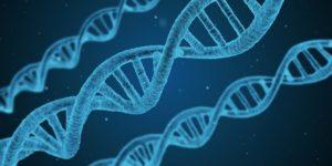 Noonan Syndrom – Definition, Behandlung und charakteristische Merkmale