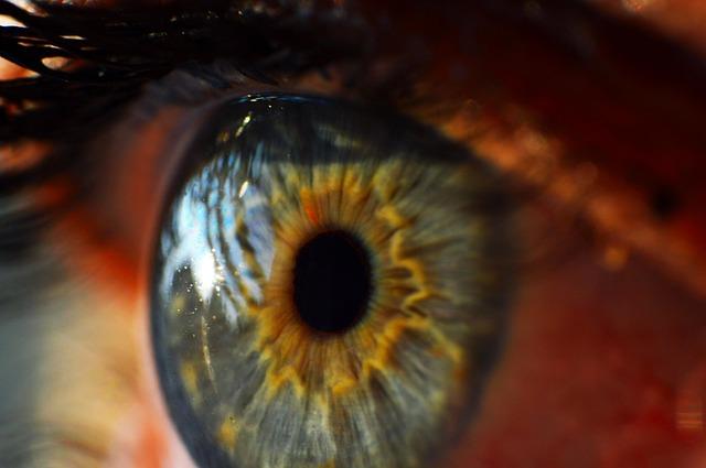 Vestibulookulärer Reflex – Bedeutung, Beschwerden und Test Verfahren