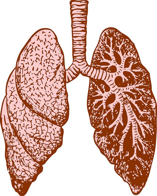 Wegener Granulomatose – Definition, Symptome, Behandlung und Therapie