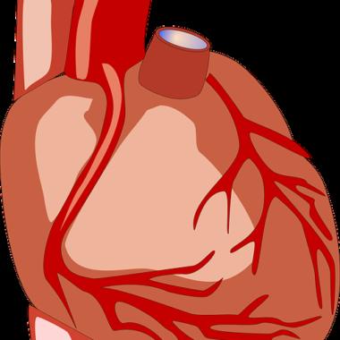 Prinzmetal Angina – Definition, Symptome und Therapie