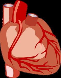 Eisenmenger Reaktion – Ursachen, Symptome und Therapie