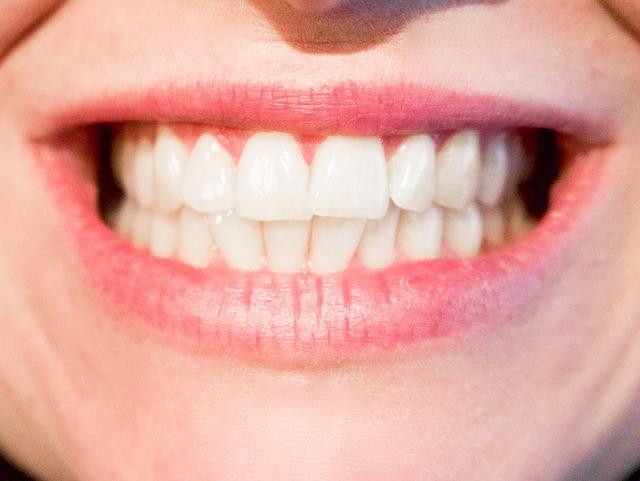 Wie viele Zähne haben erwachsene Menschen und Kinder in der Regel?