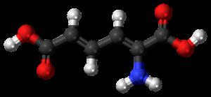 Metabolisch