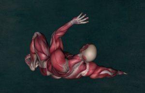 Schultersehnen – Behandlung und Ursachen der Verletzung