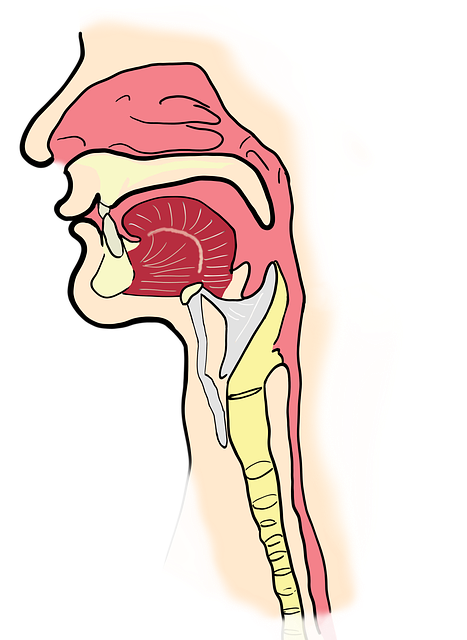 Zungengrundhyperplasie – Definition und Behandlung