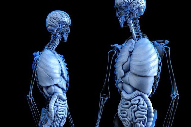 Brustschmerzen rechts – Beschreibung und häufige Ursachen