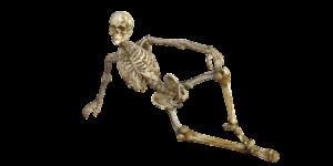 Knochen knacken – Warum machen Gelenke Geräusche?
