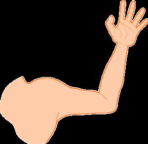 Muskelzucken im Oberarm – Ursachen und mögliche Erkrankungen