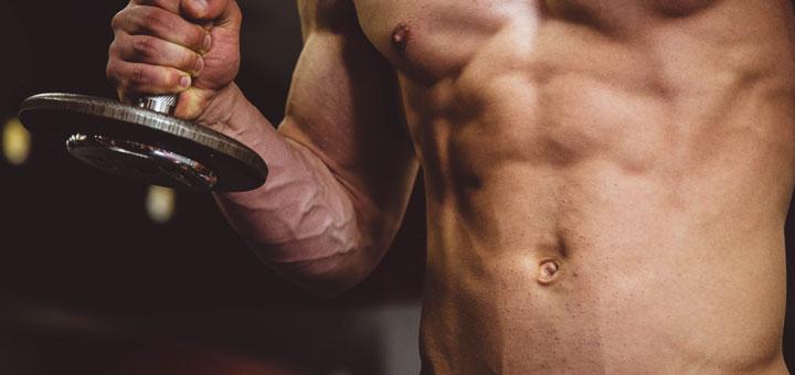Anabole Steroide fördern den Muskelaufbau