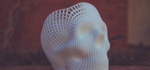 Schädel Modell aus dem 3D Druck erzeugt
